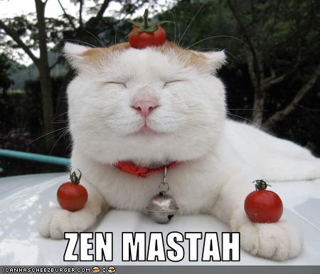 Zenmastah - LOLcats