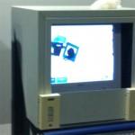Leones en la máquina de Rayos-X del aeropuerto