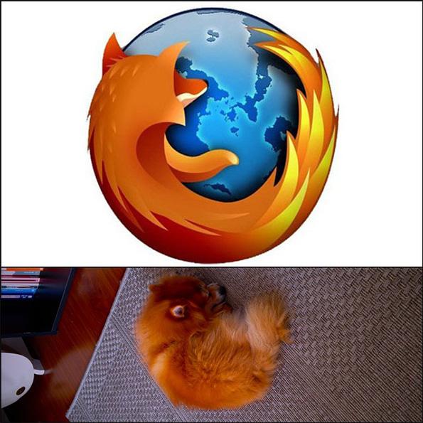 Pash + Firefox